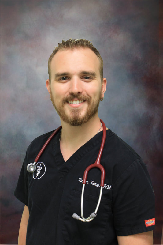 Dr. Tanner Tracy, DVM